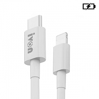Type-C to Lightning Cable