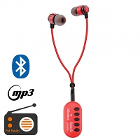 Bluetooth FM In-Ear Headset