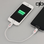 Micro USB to Lightning Charging Cable