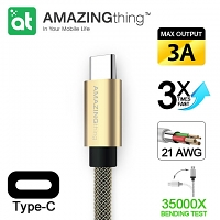 AMAZINGthing Type-C USB Cable