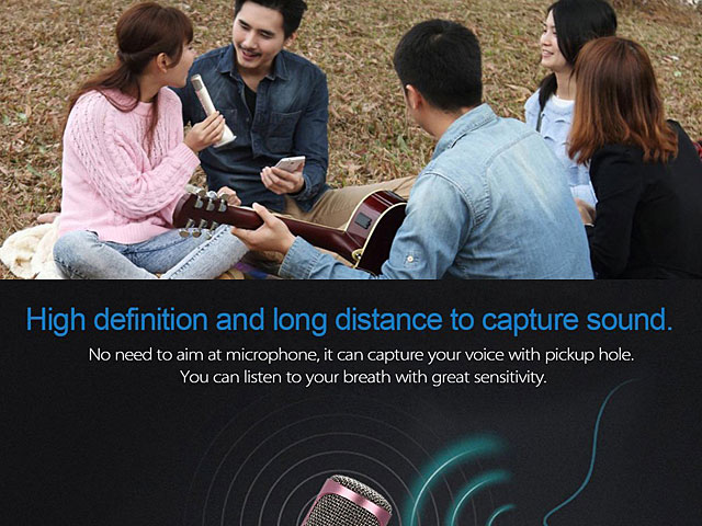 Handheld Bluetooth Stereo Speaker Microhpone