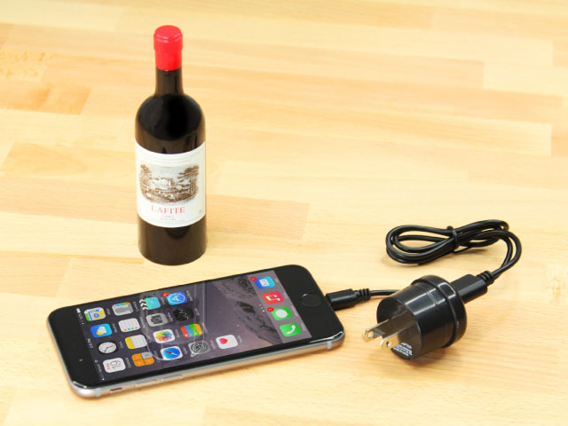 Wine Bottle Lightning Charger Kit